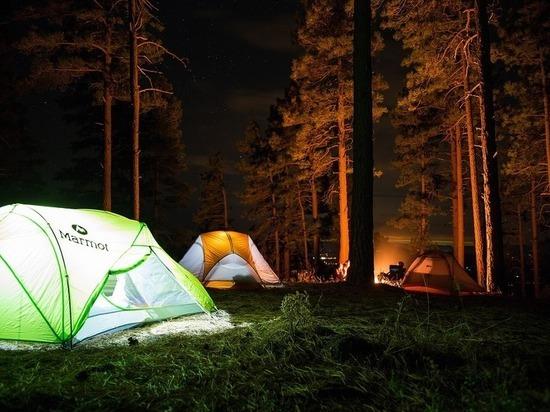 В Синицинском бору Ишима возник палаточный лагерь