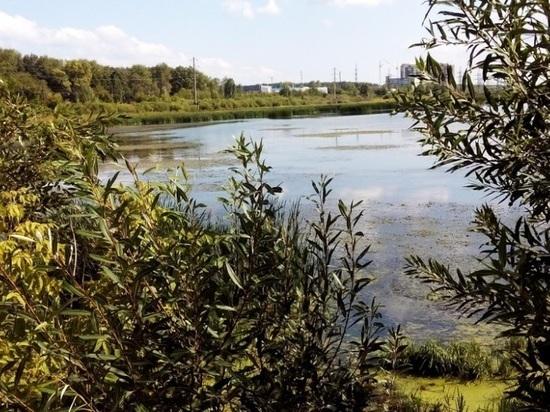 Озеро Алебашево превратится в масштабную зону отдыха