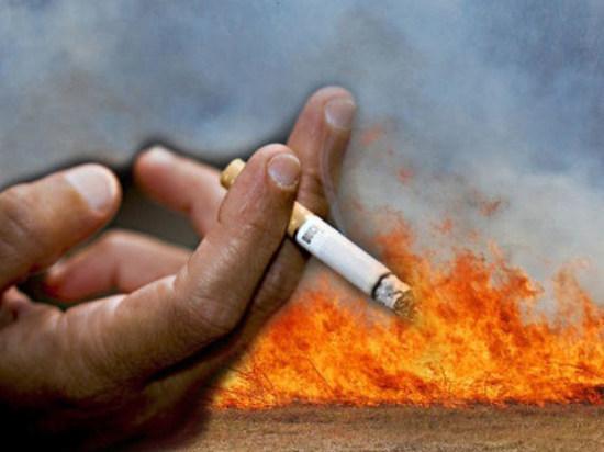 Причиной пожара в Койбалах стала непотушенная сигарета