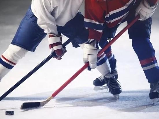 ХК «Мордовия» не пропустит предстоящий сезон первенства ВХЛ