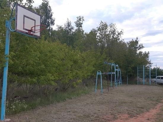 Житель Александровки своими силами воссоздает спортплощадку