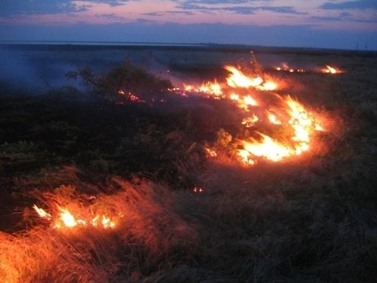Осторожно, огонь: в Оренбуржье высокий класс пожарной опасности