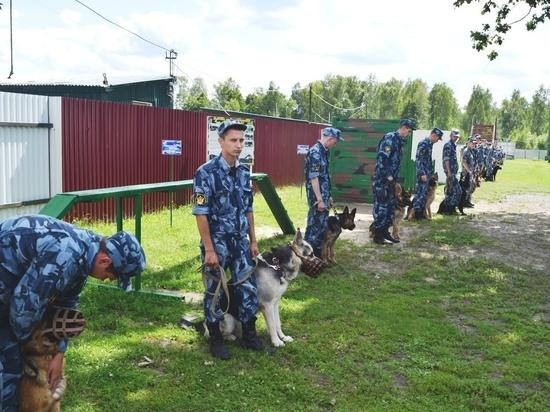Кинологи из семи регионов проходят обучение в Мордовии