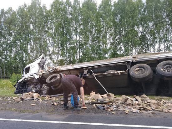 В Мордовии на трассе не смогли разъехаться две фуры