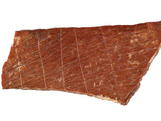 Палеонтологи нашли кости с одними из древнейших рисунков