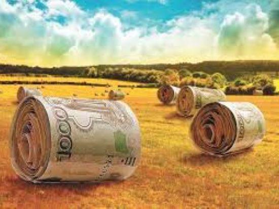 В калмыцком сельхозведомстве определили обладателя гранта