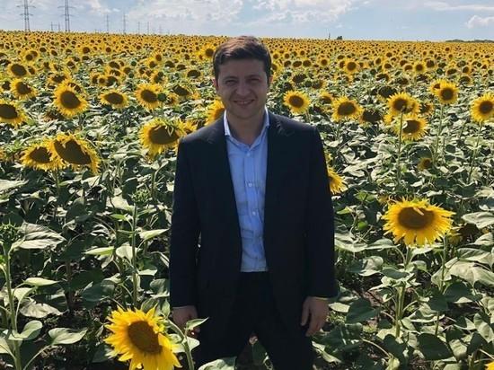 """В Раде Украины будет """"монокоалиция"""" Зеленского, считает эксперт"""