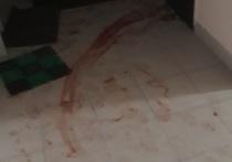 Жители Муравленко рассказали об убийстве женщиной собутыльника