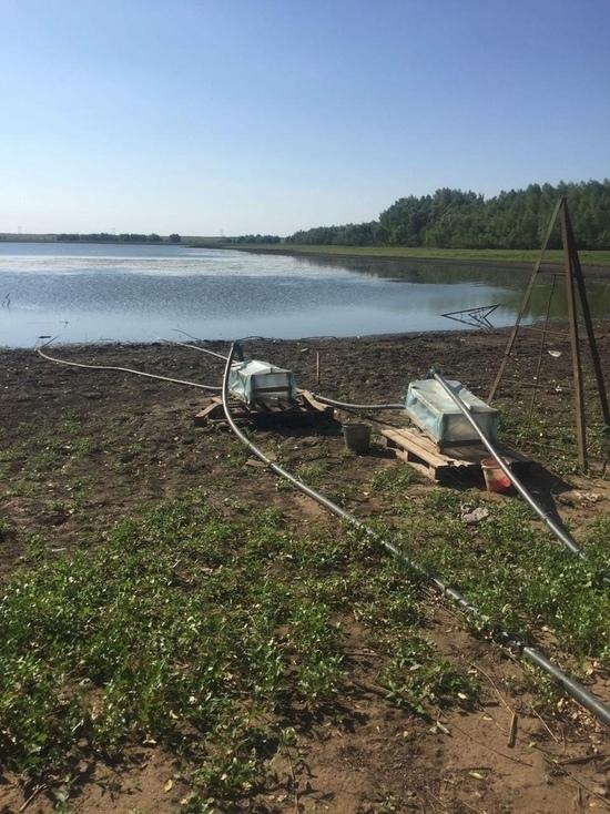 В реках и озерах Оренбуржья исчезает вода