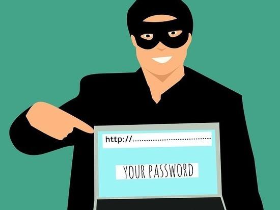 В тульском регионе раскрывается лишь каждое третье телефонное и интернет-мошенничество
