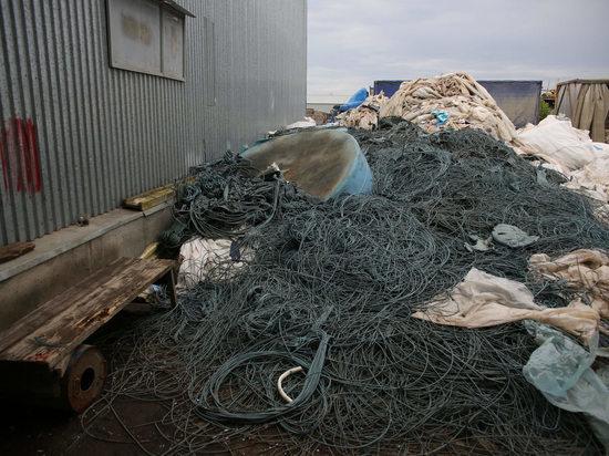 В Волгоградской области расширяют переработку полимерных отходов