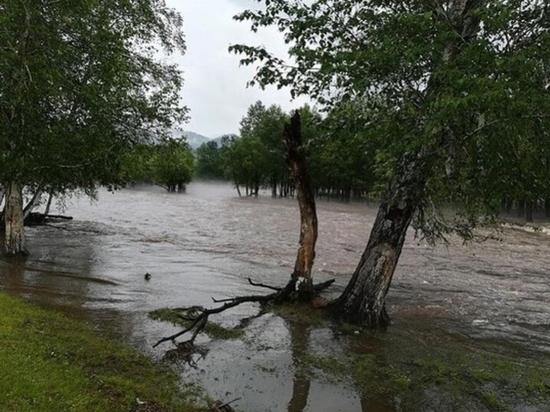 «Реки вышли, деревья плывут»: в Закаменском районе в Бурятии начинается потоп