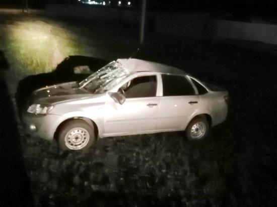 В Новосергиевке районе водитель погиб, слетев в кювет