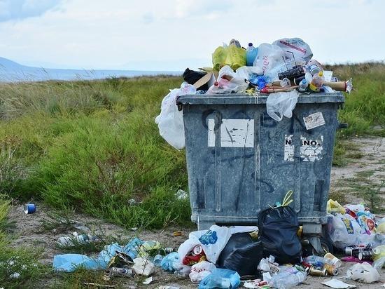 Псковская область вошла в список регионов с высоким риском возникновения «мусорных» протестов