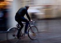Росгвардия задержала велосипедиста-грабителя