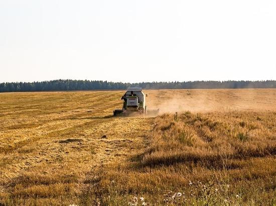 Нижегородские аграрии приступили к уборке урожая