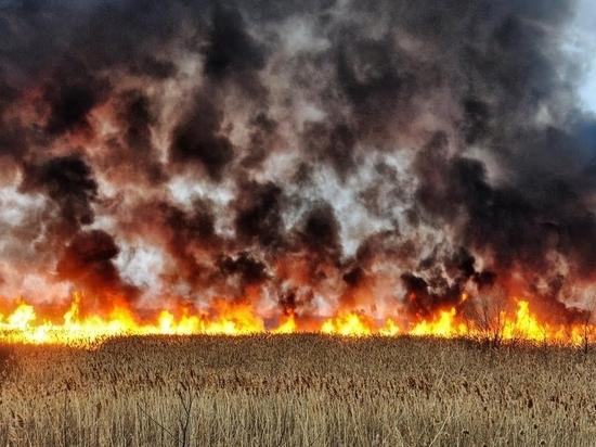 В Оренбургской области введен пятый класс пожарной опасности