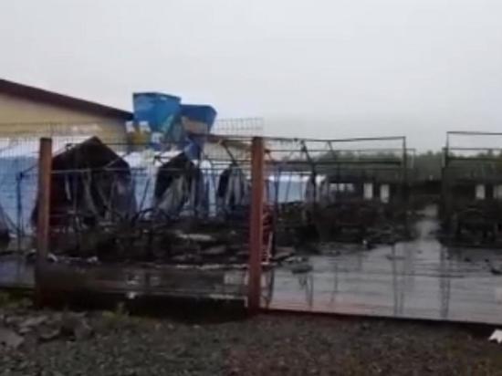 Скончалась четвертая жертва пожара в палаточном лагере