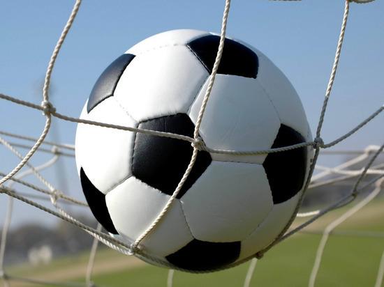 ФК «Мордовия» сыграет дома с «Чайкой»