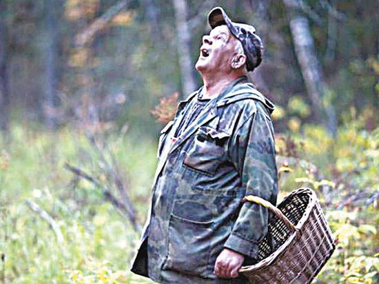 Пропавшего в лесу грибника-москвича ищут две недели