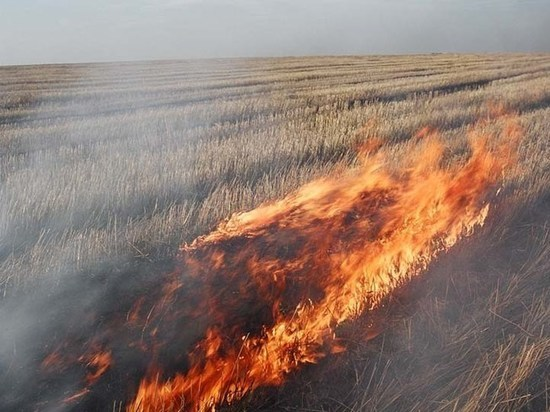 На востоке Оренбургской области объявлено чрезвычайное положение
