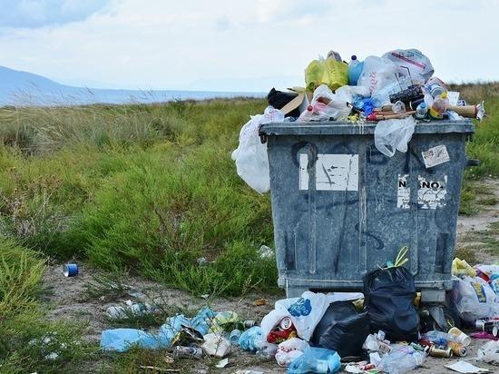 Министр природы Бурятии напомнил юрлицам про штрафы за мусор