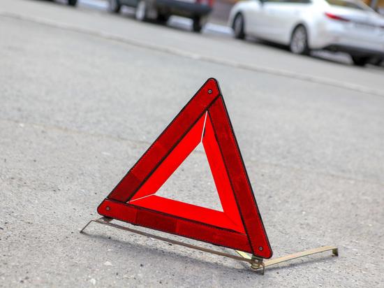 Водитель из Мордовии сбил перебегающего в неположенном месте ребенка