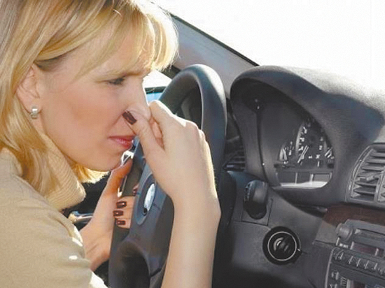 Откуда появляются в машине неприятный запах, плесень и грибок