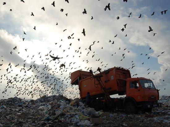 Эксперт из Башкирии считает, что убытки регоператоров «мусорной реформы» - выгодный миф
