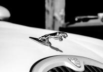 Водитель Porsche угнал Jaguar  на Новочеркасском проспекте