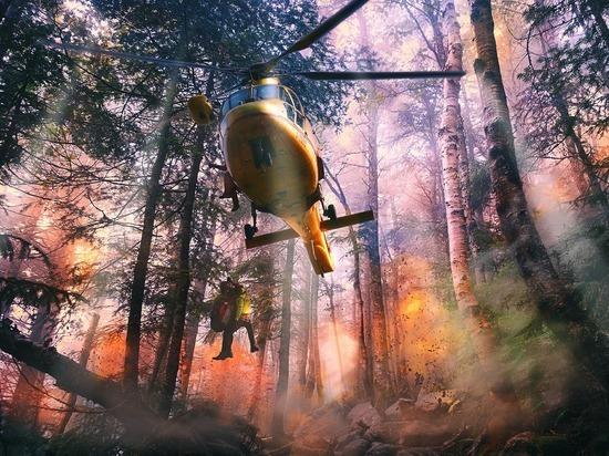 На Ямале все еще не горит лес