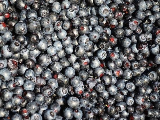 Красноярцам предлагают съесть варенье в обмен на благотворительность