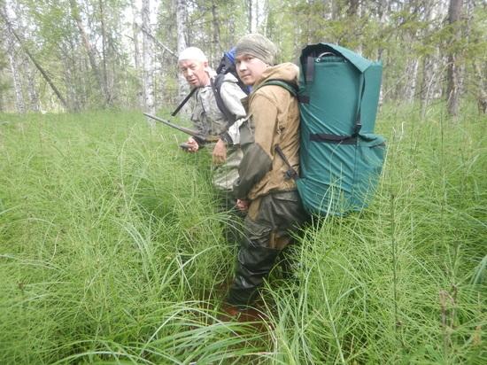Ульское болото