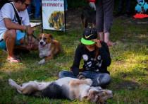 В Челябинске пройдет фестиваль гуманного отношения к животным