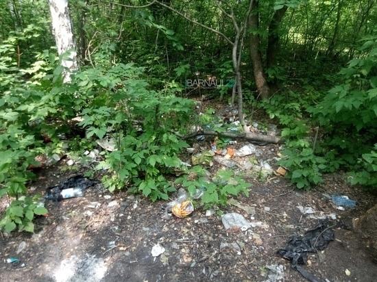 Барнаульца возмутил мусор в березовой роще на Солнечной поляне