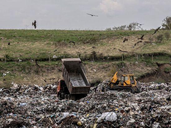 Вывоз мусора в НСО не прекратится