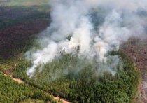 Площадь лесных пожаров в Сибири увеличивается с каждым днем и ко вторнику, 30 июля, превысила 1,5 млн