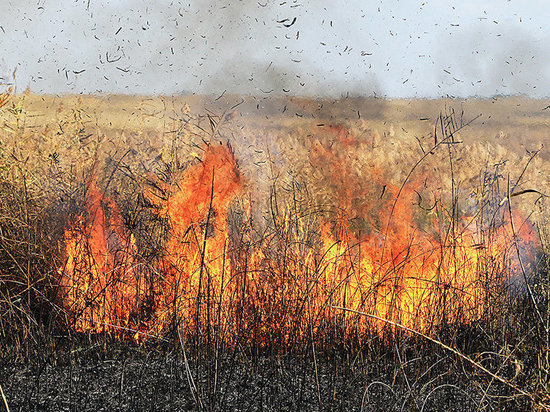 В Оренбургской области сохраняется пожарная опасность пятого класса