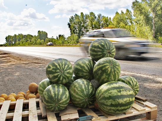 В Калининграде расцветает незаконная торговля арбузами