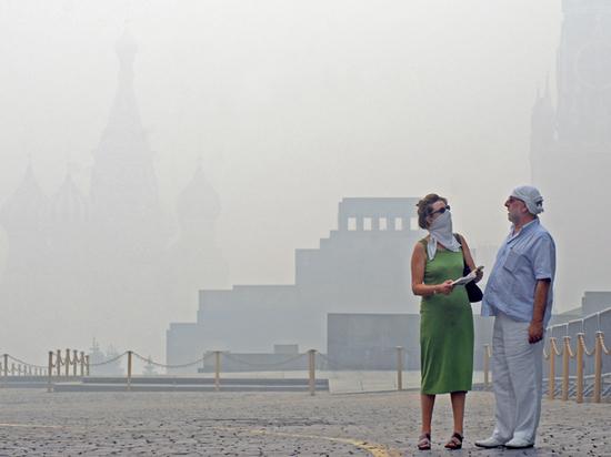 Сгорающую тайгу тушить не выгодно, пока дым не накроет Москву