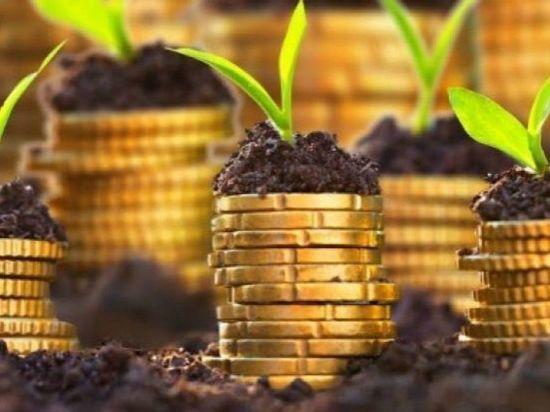 В 2019 году аграриям Мордовии выделят более 2 млрд рублей