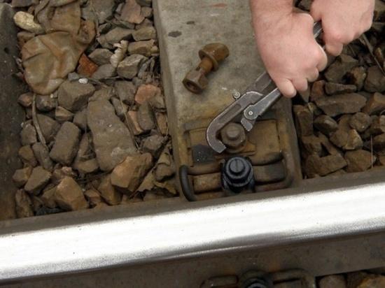 Двое тамбовчан пытались разобрать железную дорогу