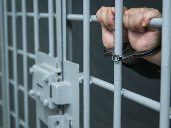 Убийце из Саранска Олегу Мышадаеву зачитали приговор