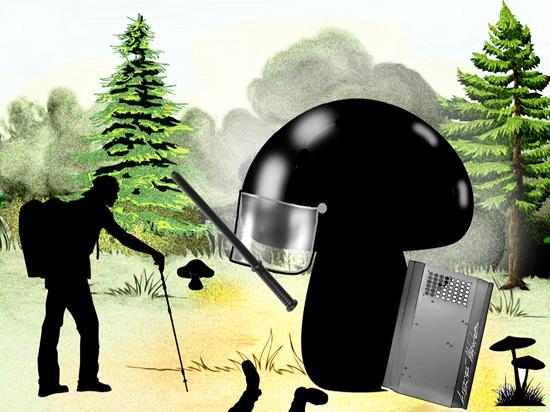 Россияне меняют протестную активность на леса