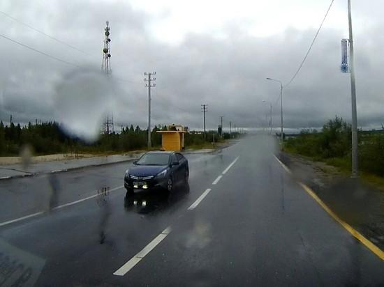 В Надыме обсуждают сбившего утку с утятами таксиста