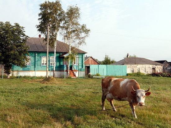 Студия Алексея Учителя планирует снять фильм вВоронежской области