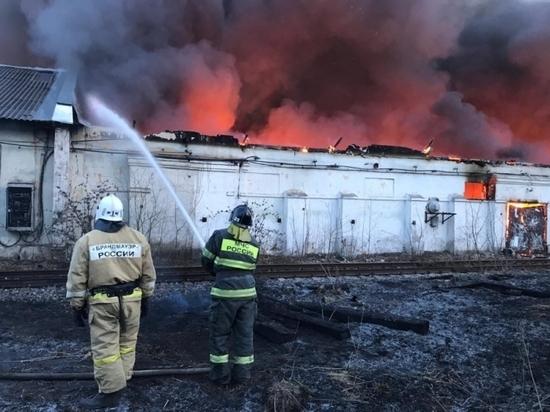 С начала года тульские пожарные совершили почти 4000 выездов