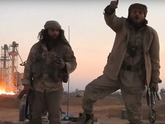США заявили, что поддерживают боевиков в Сирии