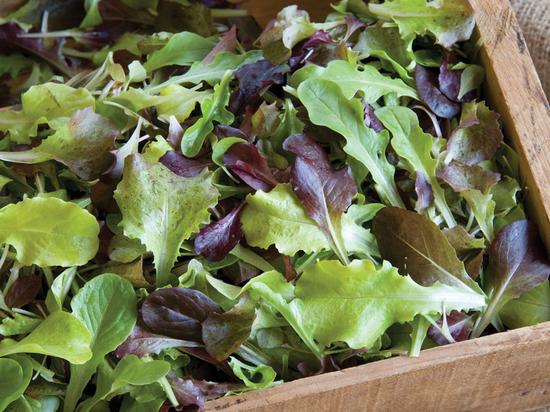 Зелень заражена листериозом из Costco и Whole Foods