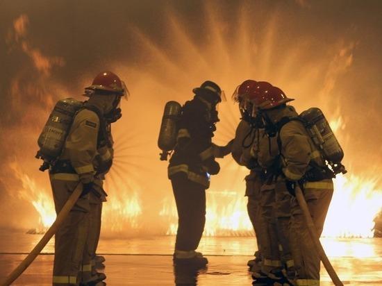 Ночной пожар уничтожил в Петербурге четыре иномарки